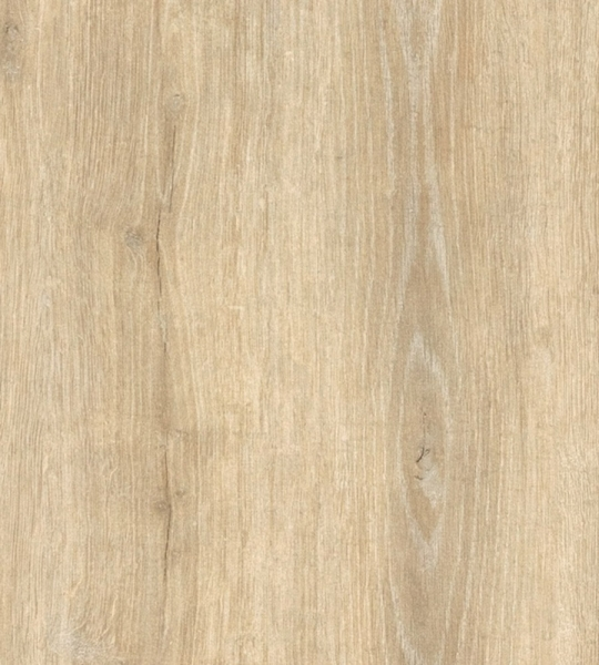 clicwall H784 W06 Robison Oak Light Natural